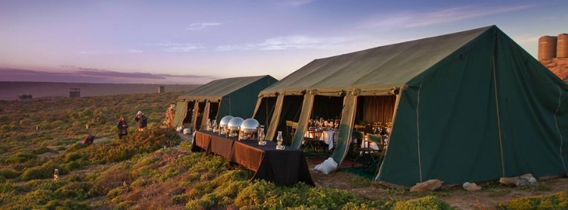 Namaqua-Flower-Camps-2