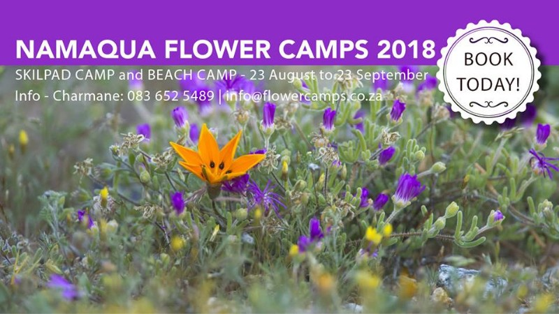 Namaqua-Flower-Camps-7
